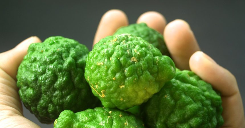Il bergamotto: riscopriamo questo agrume benefico per il nostro organismo