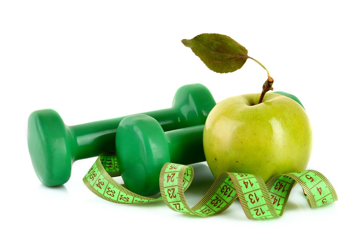 Wellness Healthy Weight Dog Food Ingredients