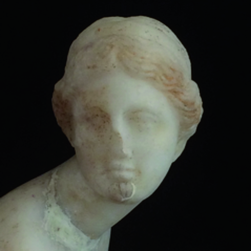 Susanna Benigni, La venere arguta, BookSprint Edizioni, Salerno 2018