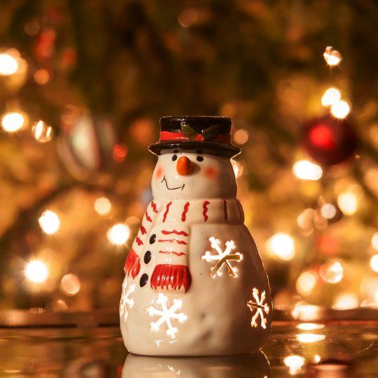 Un regalo diverso sotto l'albero