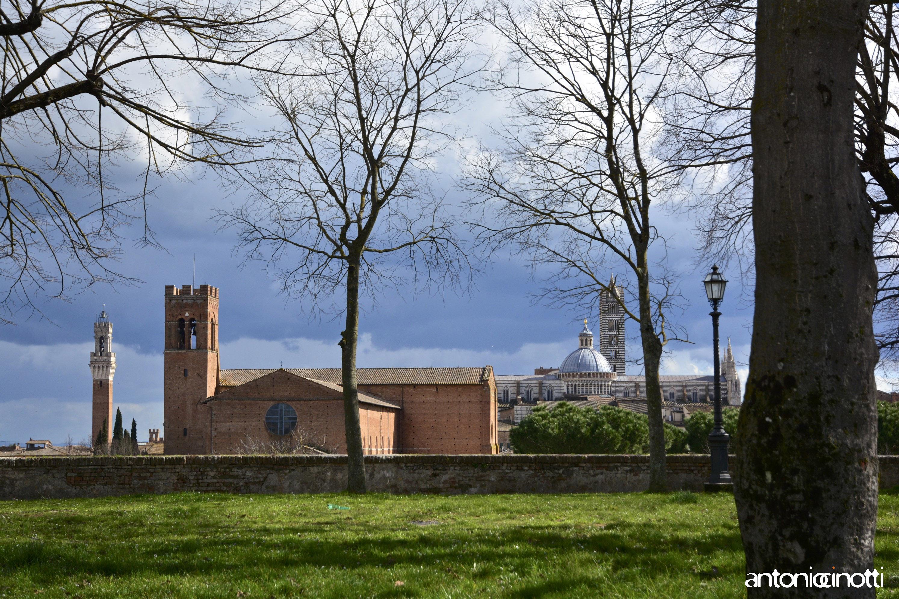 Dalle Crete a Siena