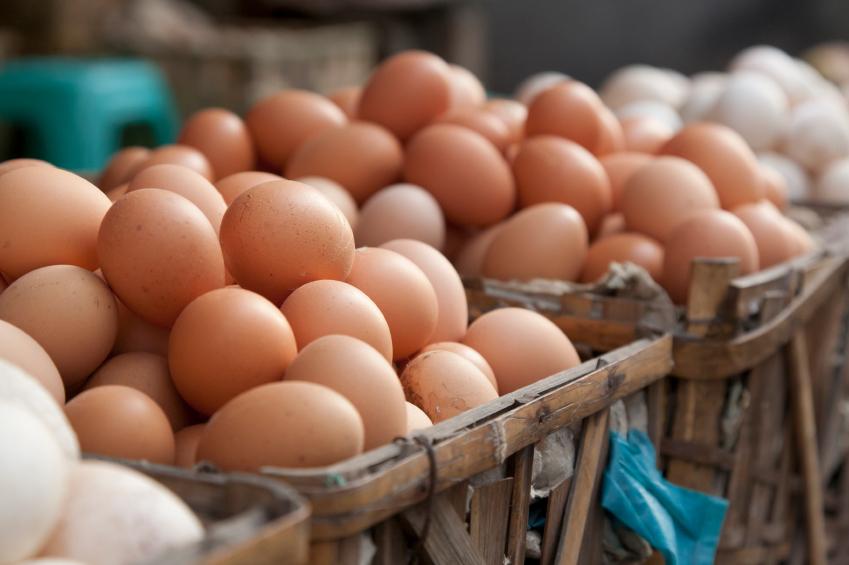Uova contaminate, aumenta il numero dei richiami