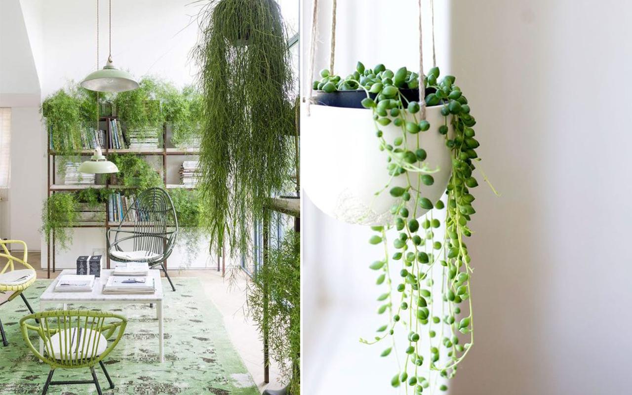 Come unire soggiorno e sala da pranzo nel modo giusto for Tassa di soggiorno siena