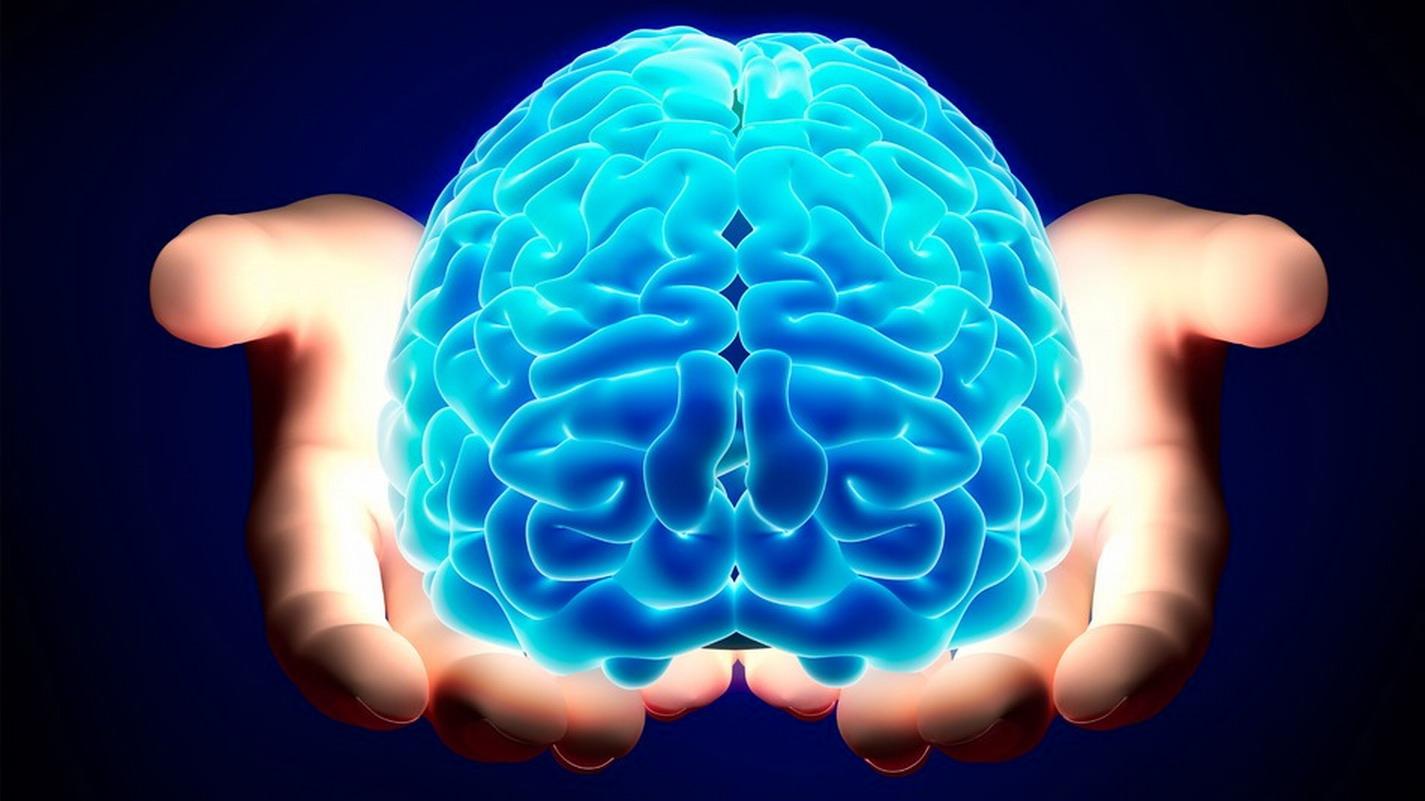 Gli studi di Economia: più Neurologia e più Psichiatria sono le chiavi della Neuroeconomia
