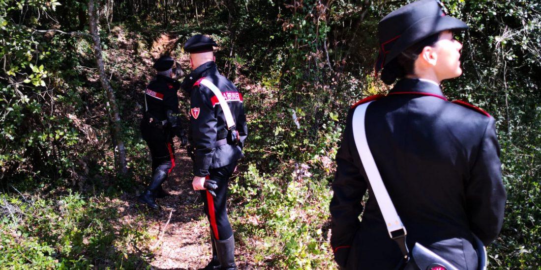 Lavoratori al nero in azienda della Val di Merse: multa ...